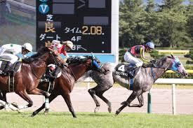 【競馬ネタ】日本海最強馬に必要な条件は? (瀬戸内海ではないよ