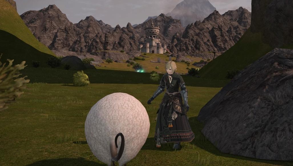 羊を捕まえたい