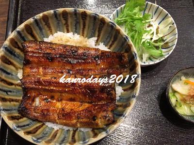 20180826_うな丼