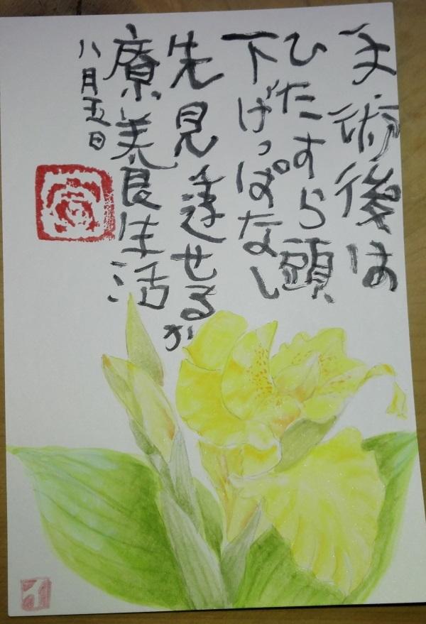 180805-7.jpg