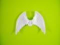 ワシピンク:翼(ペンタゴン) 1