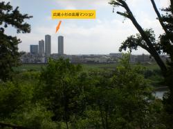 国分寺崖線 展望