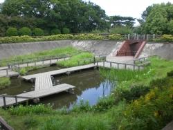 四季の野草園・水生植物園