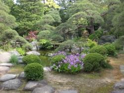 柴又 山本亭 日本庭園