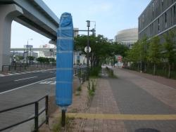 豊洲市場 バス停 布で覆われている