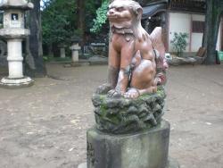 品川神社 備前焼狛犬 吽形