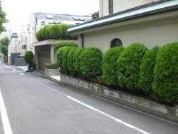 渋谷 松濤 高級住宅街1