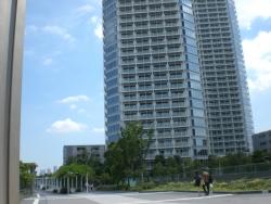 二子玉川 高層マンション横の路