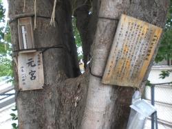 神田駿河台 太田姫稲荷神社 元宮2