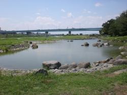二子玉川 兵庫島公園から見た新丸子橋