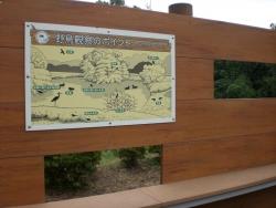 二子玉川 砧公園 バードサンクチュアリ2