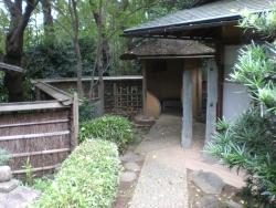 二子玉川 岡本 松本記念音楽迎賓館 庭2