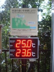 等々力渓谷 気温