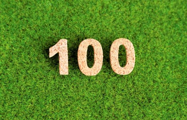 キャプチャ100