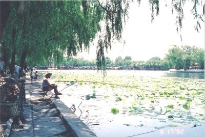 北京の初夏 於什刹海
