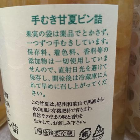 手剥き甘夏ふるさと納税8/15 7