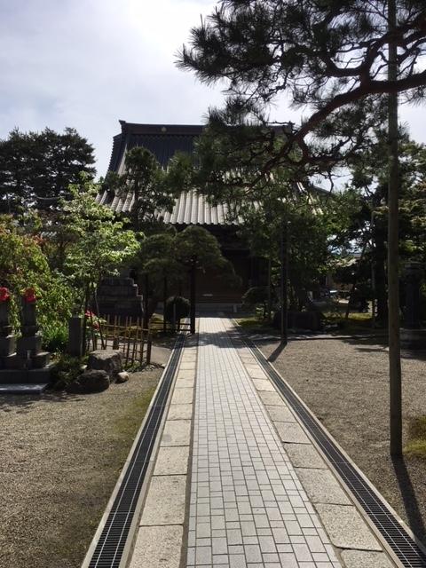 shibata_3.jpg