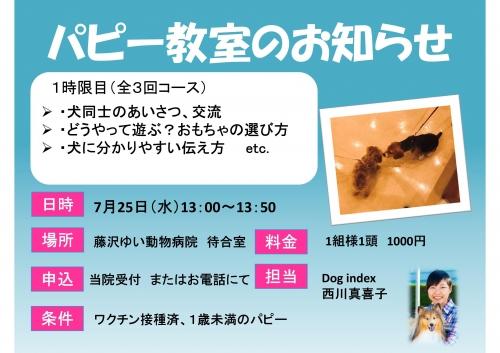藤沢ゆい動物病院パピー教室