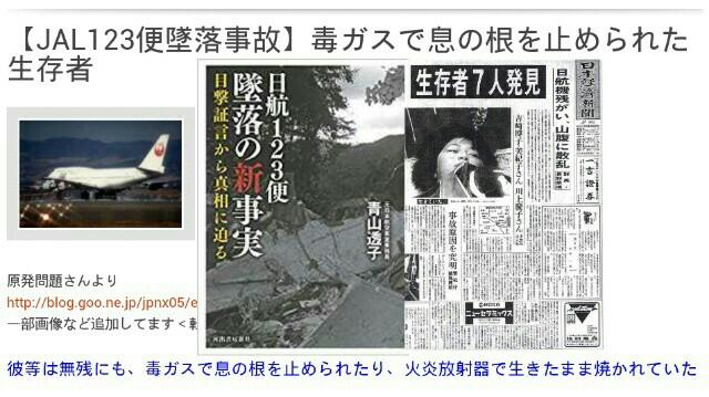 新証拠「日航123便墜落」生存者は自衛隊が「火炎放射器」で焼き殺す!多量のベンゼン環が発見された【国