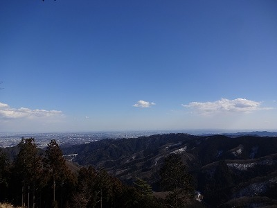 尾高 (49)