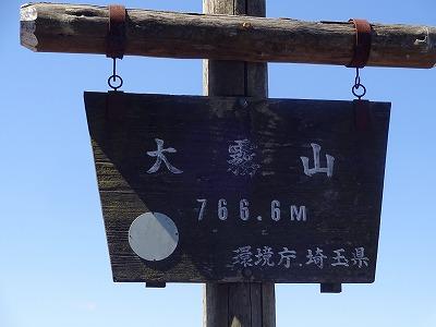 測定 (24)