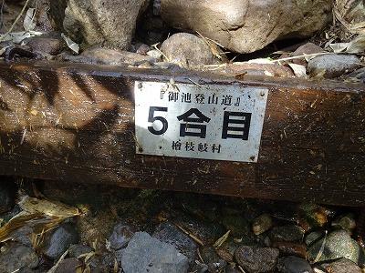 燧 (65)
