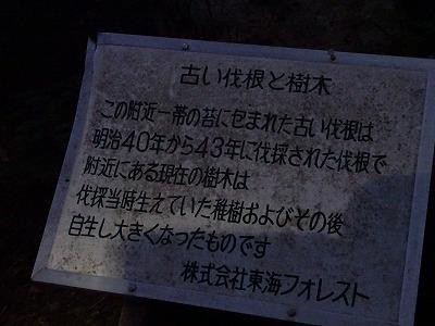 赤悪 (695)