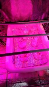 水耕栽培LED