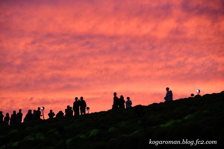 ひたち海浜公園の夕焼け2