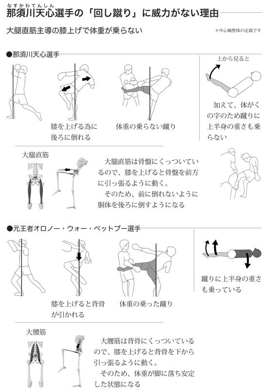 tenshin mawashigeri3