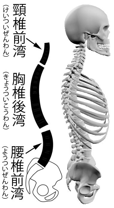 wankyoku.jpg