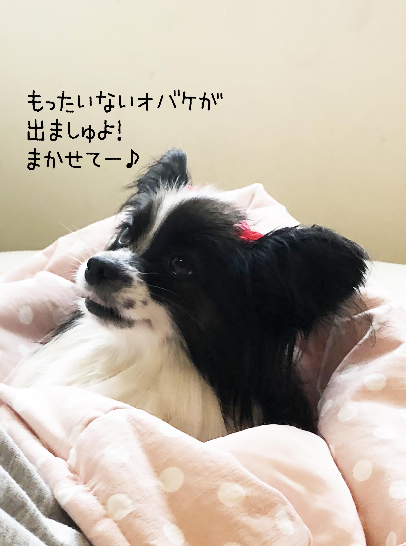 1809ミカン担当bijouちゃん