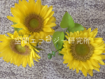 2018blog_014.png