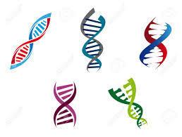 2018年7月会報DNA2