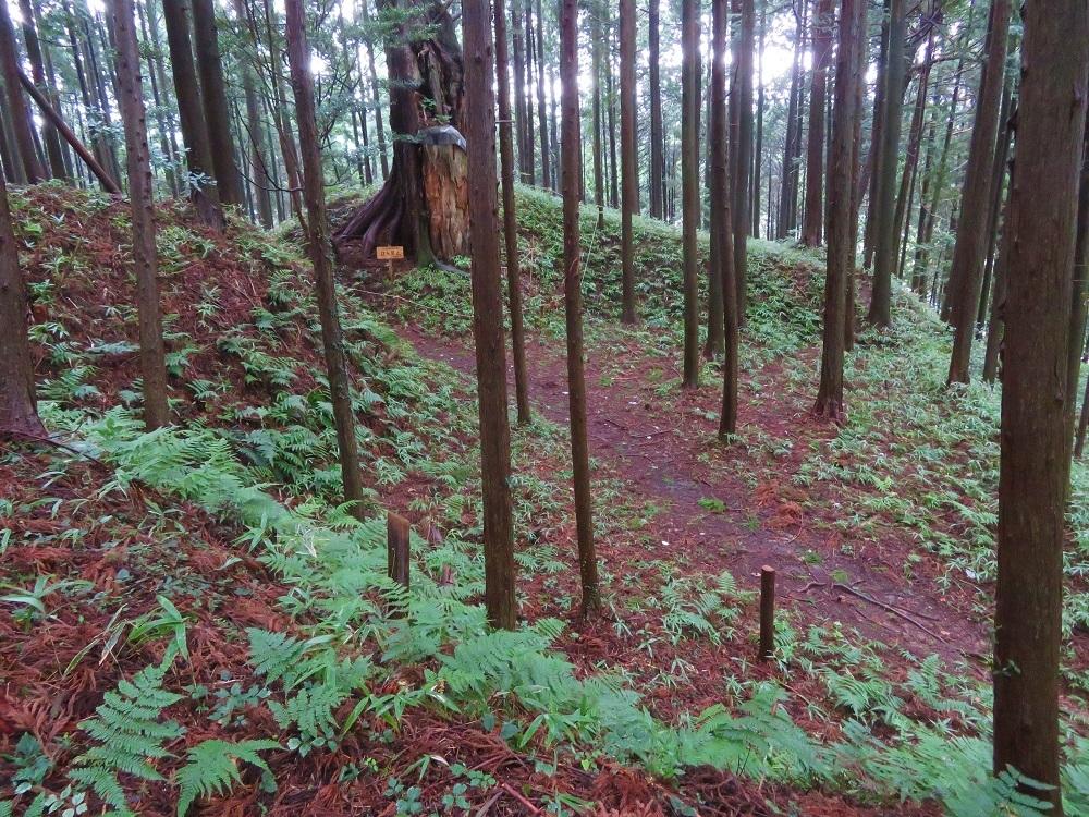 furumiya (3)
