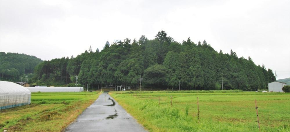 furumiya (10)