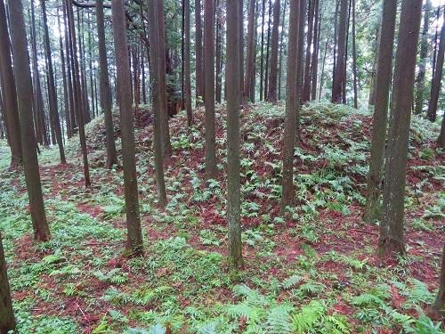 furumiya (5)