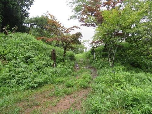 mkameyama (3)