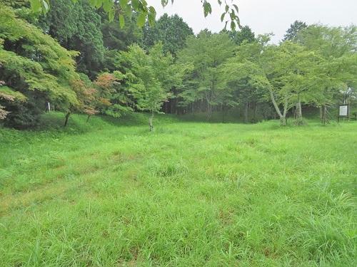 mkameyama (4)