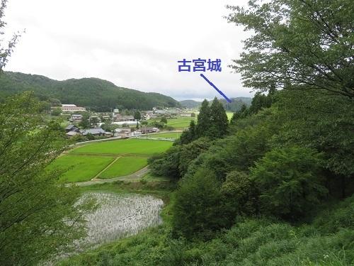 mkameyama (13)