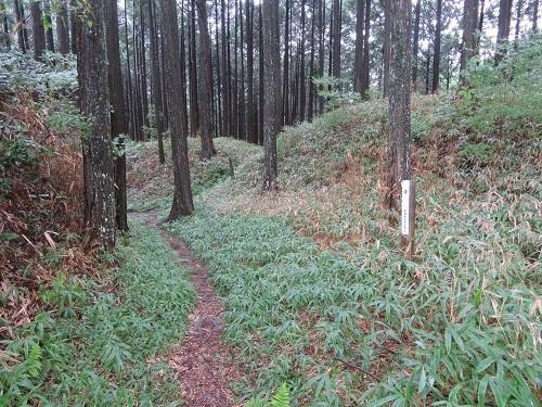 mkameyama (7)
