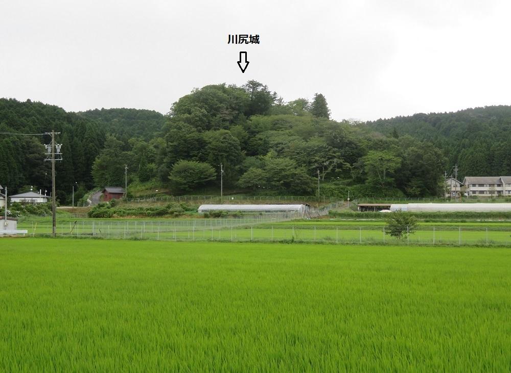kawajirimk (1)
