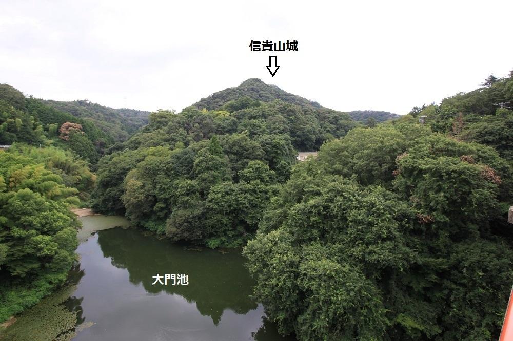 daimonnsigi (32)
