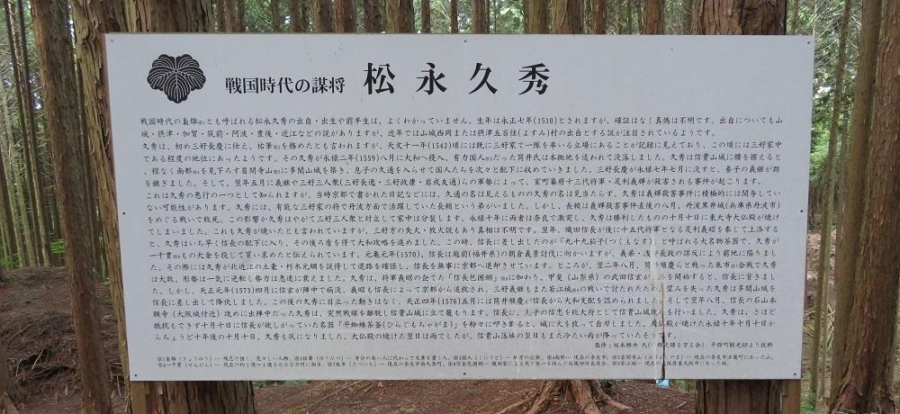 daimonnsigi (20)