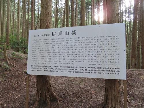 daimonnsigi (24)