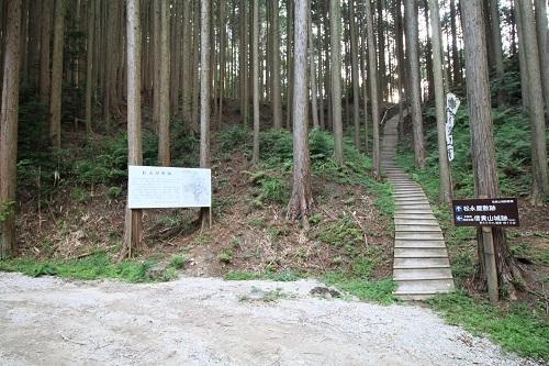 daimonnsigi (42)