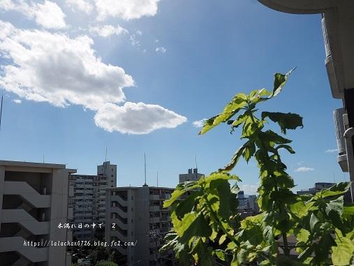 20号台風 3