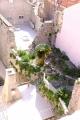 7 破壊された壁を上手に使って庭との通路にしている