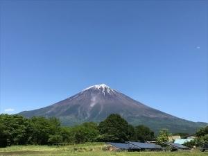 LG Fuji