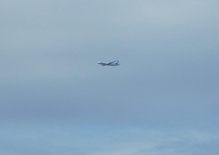 島飛行機3008